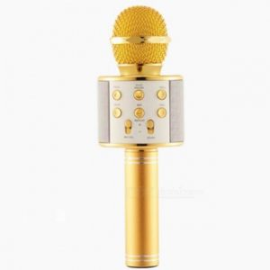 asyrmato mikrofono karaoke me ensomatomeno hxeio xrysafi