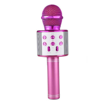 mikrofono kai karaoke asyrmato forito roz