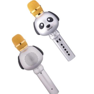 asyrmato forhto mikrofono karaoke kai hxeio