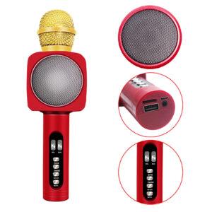 asyrmato mikrofono me hxeio gia karaoke aytonomo kai thyres usb tf